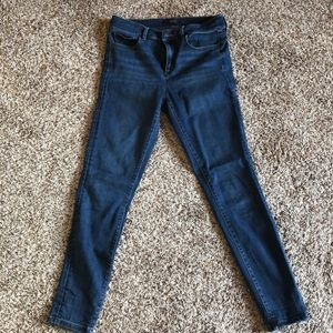 Ann Taylor size 4 The Skinny Jean